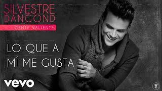 Silvestre Dangond - Lo Que a Mí Me Gusta (Audio)