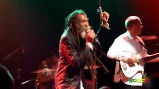 Don Carlos & Dub Vision Band - Favorite Cup
