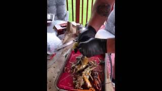 Big B's way of preparing a live lobster