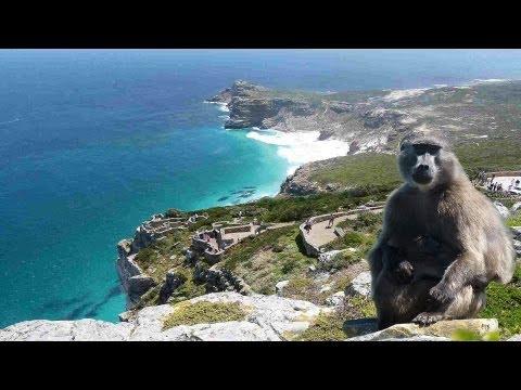 Kap der guten Hoffnung / Beautiful Cape of good hope / cape point South Africa [HD]