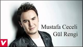 Mustafa Ceceli- Gül Rengi