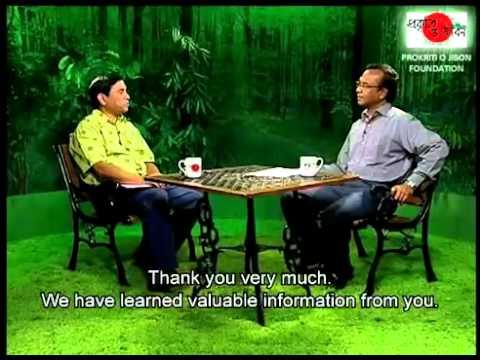 Travel Bangladesh   Discover Nature and Life 3B   travelbangladesh net