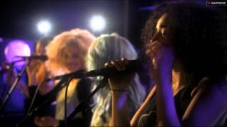Neon Jungle - Welcome to the Jungle - Live Session