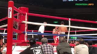 """Luis """"Pantera"""" Nery acaba en el segundo round con Shinsuke Yamanaka en Japón"""