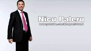 Nicu Paleru - Viata Se Duce