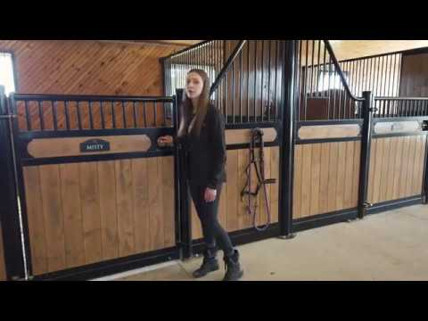 Plunger Horse Stall Latch For Your Barn