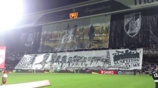 ''Sou Vitória'' ● Vitória SC x SL Benfica