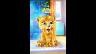 Che caldo #4 gatto