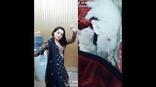 Desi girl dancing Tik Tok 🐈
