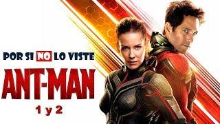 Por si no lo viste: Ant-Man (and the Wasp)