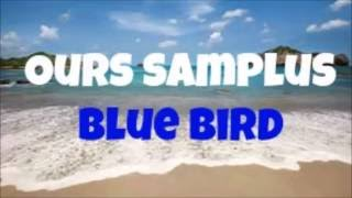 Ours Samplus | Blue Bird (MARZBAR regularly uses in Vlogs)