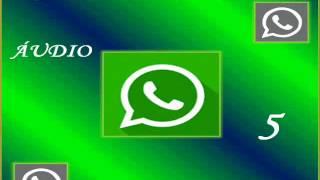 Áudio do WhatsApp mais lindo do mundo-  Cláudya Santana