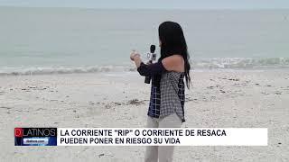 Autoridades anuncian alerta del clima en nuestras costas. Anaí Urquidi con el informe