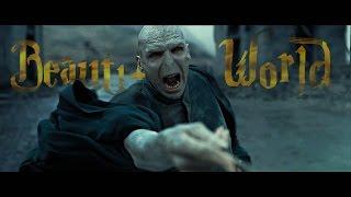 Harry Potter - Beautiful World