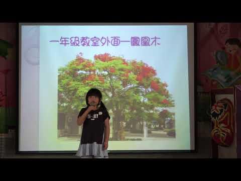 1070529重寮國小一年甲班校園植物介紹 - YouTube