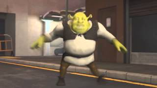 Leo Stronda feat Shrek - PAU is love, PAU is life