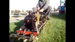 Portuguese live steam