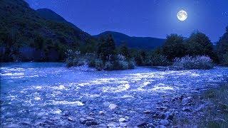Música Relajante para Dormir Desde Rio Manso en la Noche de Luna