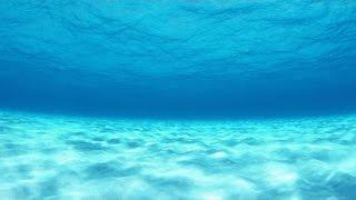 Meditation Spa - Underwater World