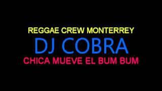 Dj Cobra   Chica mueve el bum bum XTD Version