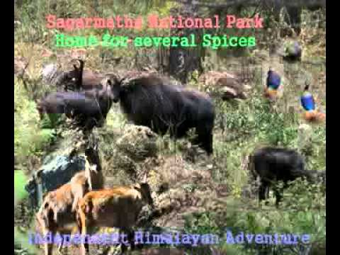 Sagarmatha National Park NEPAL.mp4