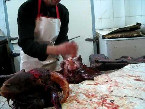 Goat Head Pus Shot in Moroccan Market