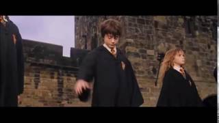 HARRY POTTER - PUTE DE KAARIS