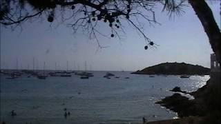 Jazz Standard - WAVE ( Antonio Carlos Jobim ) on Chromatic Harmonica by Roel VH