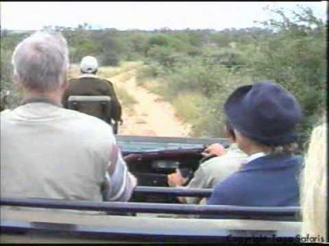 African Safaris to Motswari Game Reserve