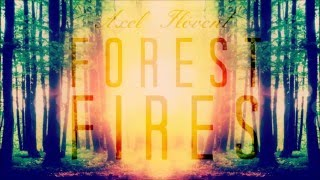 Axel Flóvent - Forest Fires [ Lyrics Soul ⚡ Music ]