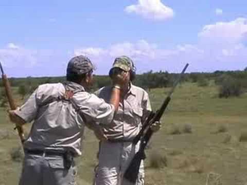 Zebra Hunting – South Africa