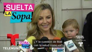 Julián Gil canceló visita y Marjorie de Sousa reaccionó | Suelta La Sopa | Entretenimiento