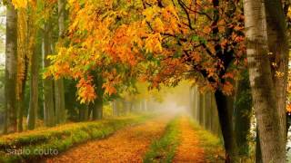 🎧  Meditação - Musica Relaxante para Despertar Espiritual e Relaxamento Profundo!