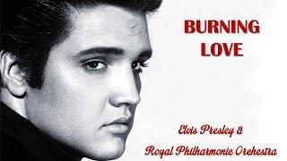 Burning Love   Elvis Presley &  Royal Philharmonic Orchestra (TRADUÇÃO) HD (Lyrics Video)