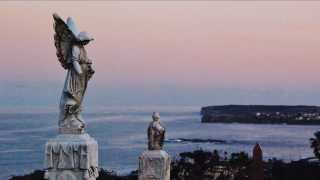 The Sunset of the Angels - Save Waverley Cemetery