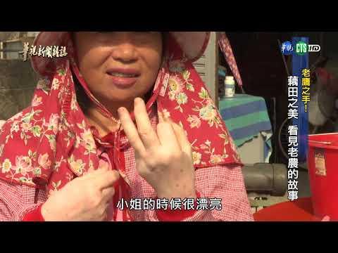「老鷹之手」藕田之美 看見老農的故事 - YouTube