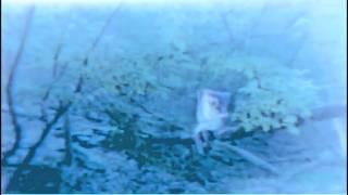 Saskatchewan - Dreamboat (music video)