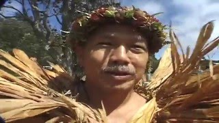 TI LEAF MAN. HAWAII USA, TRAVEL...CULTURE.