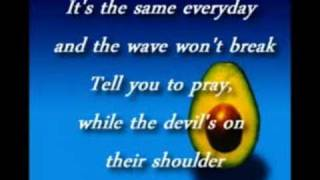 Pearl Jam - World Wide Suicide (with lyrics)