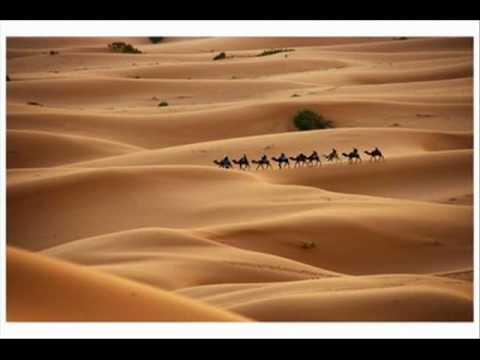 sahara morocco.wmv
