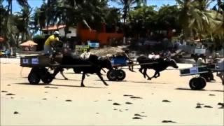 Velozes e Furiosos 8 Trailler By Mr Magnata