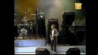 GIT, Tarado de Cumpleaños, Festival de Viña 1987