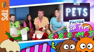 Christmas with Pets | How to keep pets safe and eating well