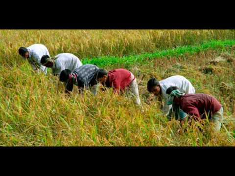 Bangladesh Ethnic Diversity In The Lush Green Hills Package Holidays Dhaka Bangladesh