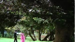 Santhana Kaatre Video Song | Thanikattu Raja Movie Songs | Rajinikanth | Sridevi | Ilayaraja