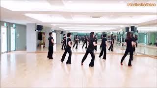 Never Gonna Fall In Love Line Dance (Easy Beginner Level)