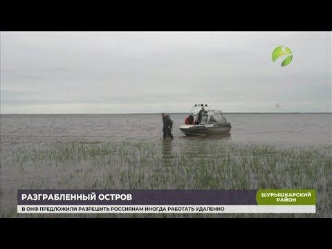 В Шурышкарском районе «Чёрные копатели» наведались на Халась-Пугор