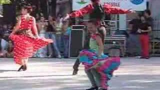 Flamenco,Camilla (6 anni)