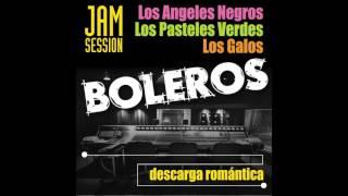 14. Amar y Vivir - Los Ángeles Negros - Boleros Jam Session
