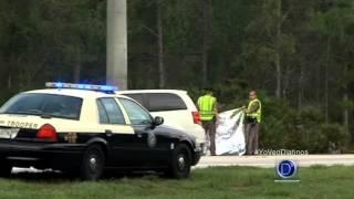 Un niño murió atropellado en Lehigh Acres